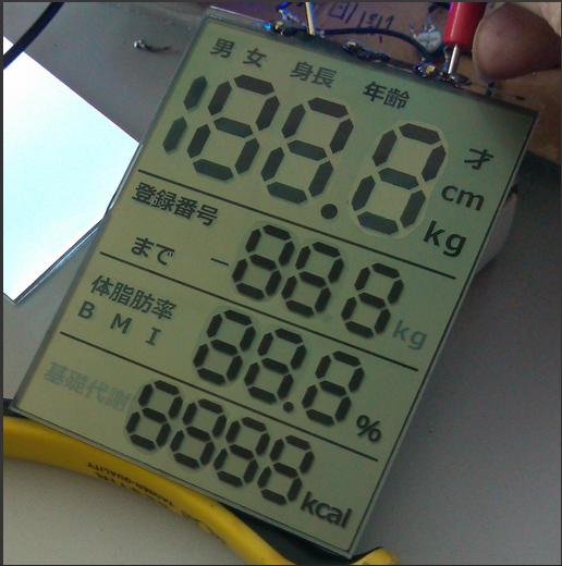数字显示LCD产品 LCD液晶屏-TN